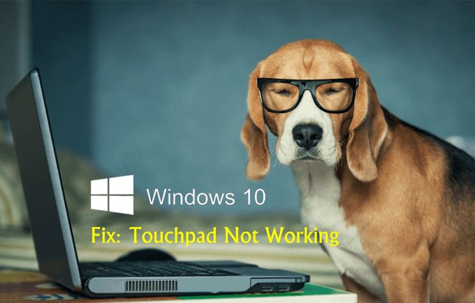 fix-touchpad-not-working-windows-10(1).png