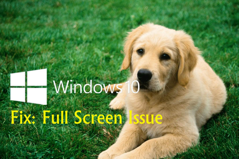 Top 3 Ways to Fix Full Screen Issue after Windows 10 Update