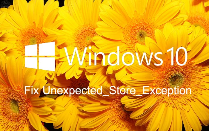 Unexpected_Store_Exception_Windows_10.jpg