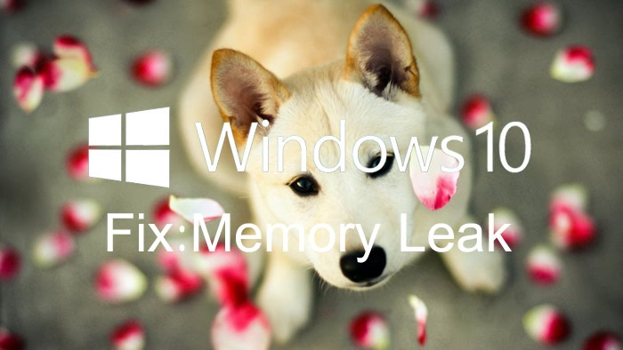 memory_leak_windows_10_update.jpg